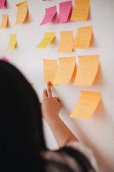 Social Innovation Consultant